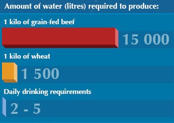 Water consumption for food production